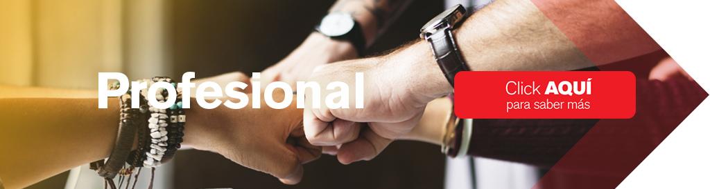 Saber más sobre Máster en Inglés Profesional
